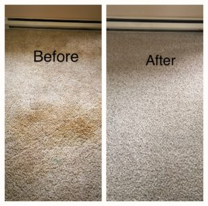 Side by side images of a carpet before it was cleaned and the same corner of the previously dirty carpet, immaculate